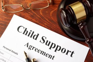 child support in collier county, florida