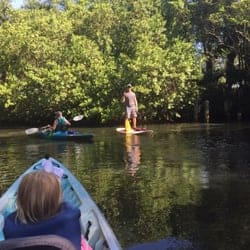 Parenting Alone in Naples, FL # 25: Estero River Outfitters
